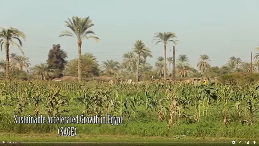 """EU """"Sustainable Accelerated Growth in Egypt"""" (SAGE) project"""